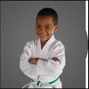 Martial Arts Star Martial Arts